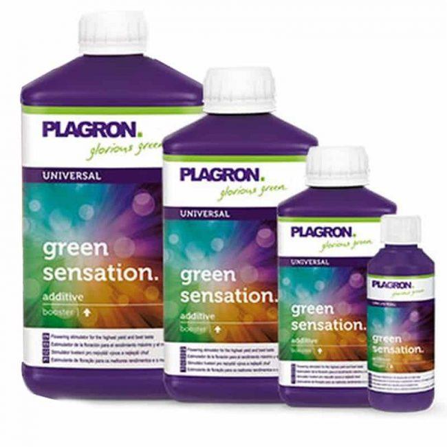 green sensations.jpg