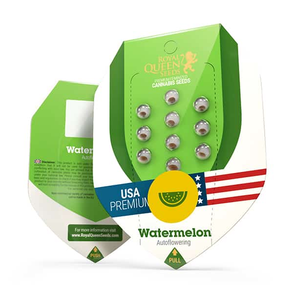 watermelon automatic cannabis seeds.jpg